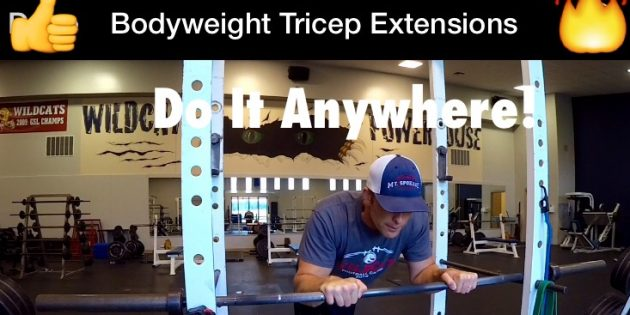 Bodyweight Tricep Extensions